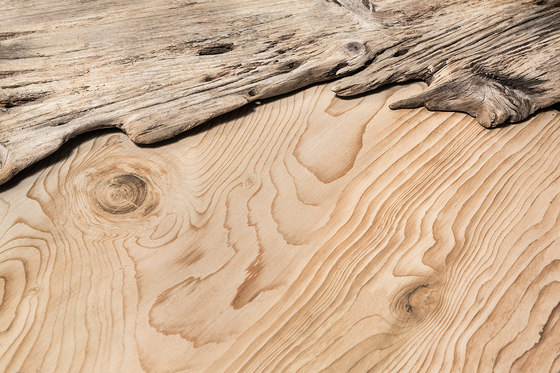 Timber |Timber Night de Neolith