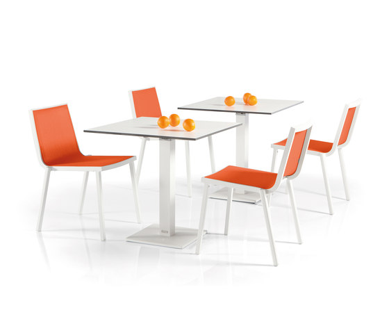 Leto Dining Chair di Manutti