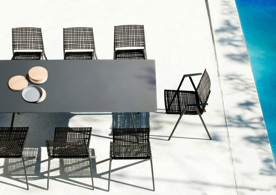 Branch Dining Table by Tribù