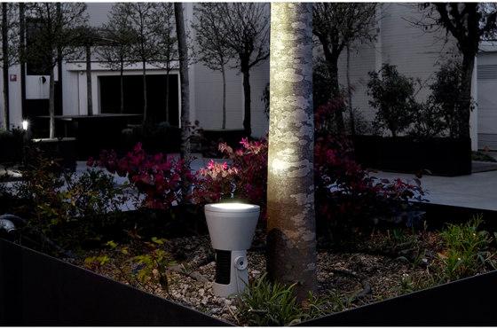 Spring 36 LED by Platek Light