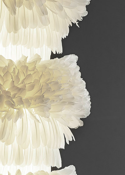 figura sposa by pluma cubic
