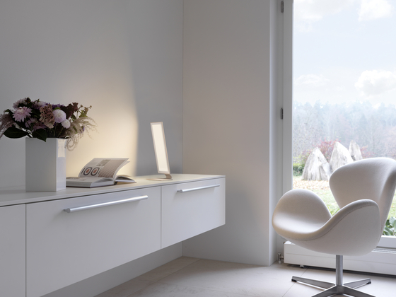 OVISO Mounted lamp without control gear by RIBAG