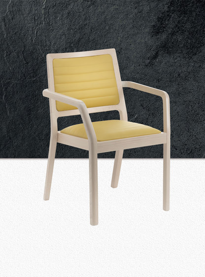 MyFrame Chair by Segis