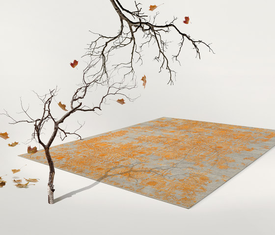 Inspirations T3 grey & orange by THIBAULT VAN RENNE