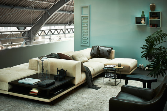Desire sofa by Linteloo