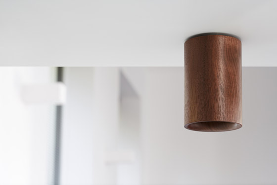 Solid | Downlight Cylinder in Natural Oak von Terence Woodgate
