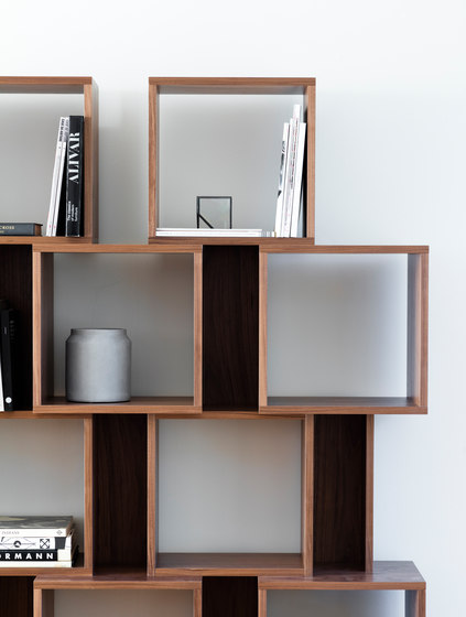 Particle shelving by Case Furniture