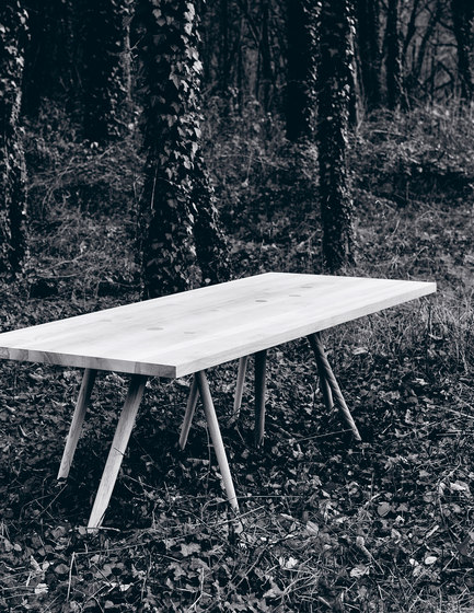 Branchmark (3) Table by Zanat