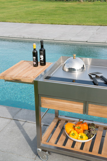 Cooking plates | 400 wok de Indu+