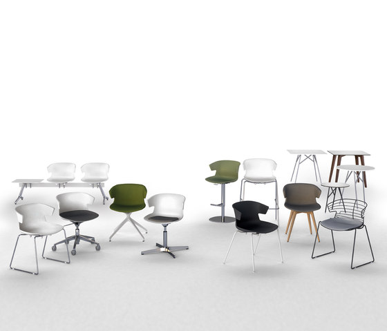 Cove bar stool de Quadrifoglio Group