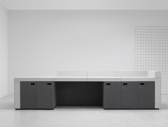 Volume Reception Desk Configuration 9 de Isomi