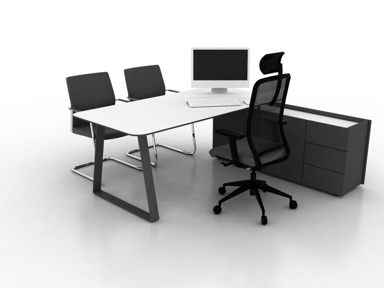 Coach Conference table de Ergolain