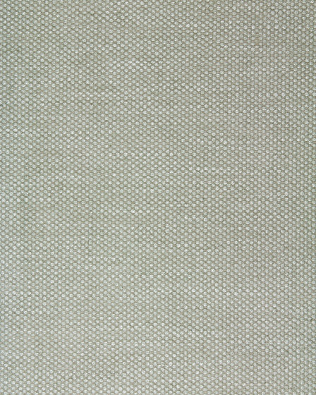LEONE - 79 de Création Baumann