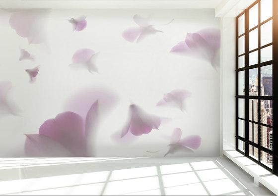 Visions Poppysicle de GLAMORA