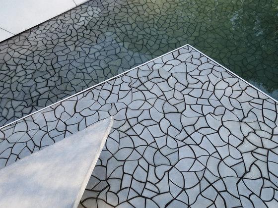 Cracked Earth by KAZA
