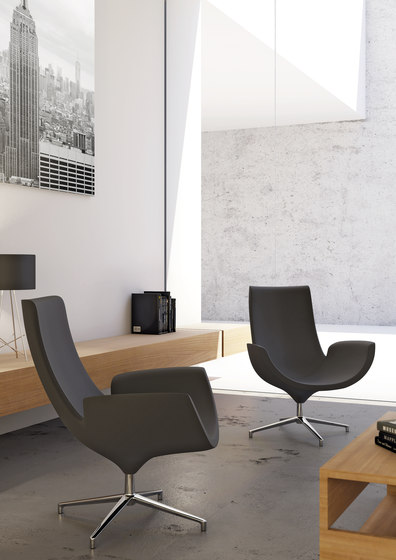 Beetle - Lounge chairs by Infiniti Design  Architonic
