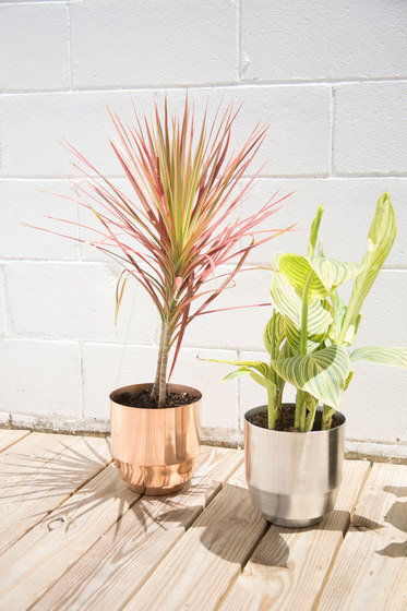 Indoor Spun Planter 8"