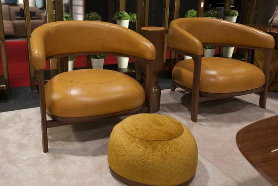 1290 armchair by Tecni Nova