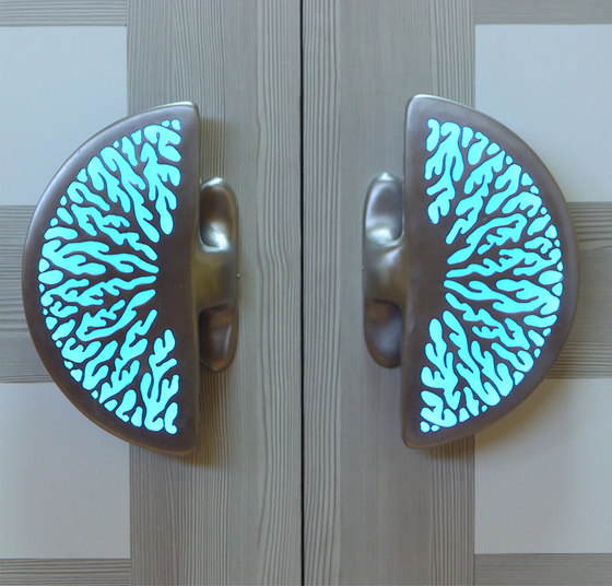 Coral Illuminated Door Handle Pull Handles From Martin