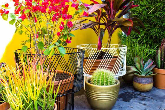 Plant Stand de Bend Goods