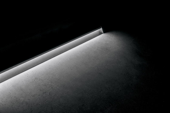 Dirigo_M de Linea Light Group