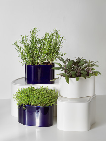 Riihitie Plant Pot B von Artek