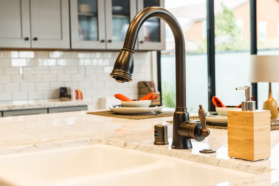 Prince™ | Single Handle Kitchen Pull-Down Faucet, 1.75gpm by Danze