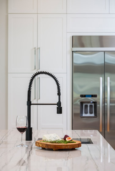 The Foodie® | Pre-Rinse Kitchen Faucet, 1.75gpm by Danze