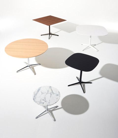 Luca de Davis Furniture