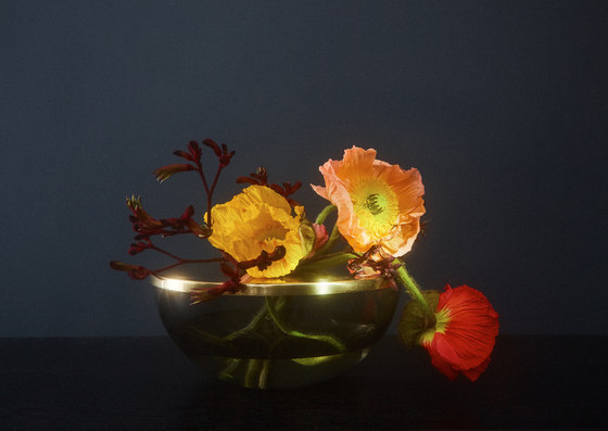 Tota   lantern by AYTM