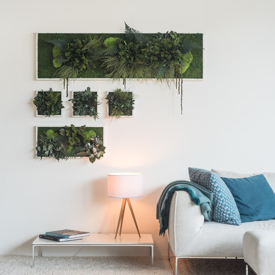plant picture | plant islands 80x80cm by styleGREEN