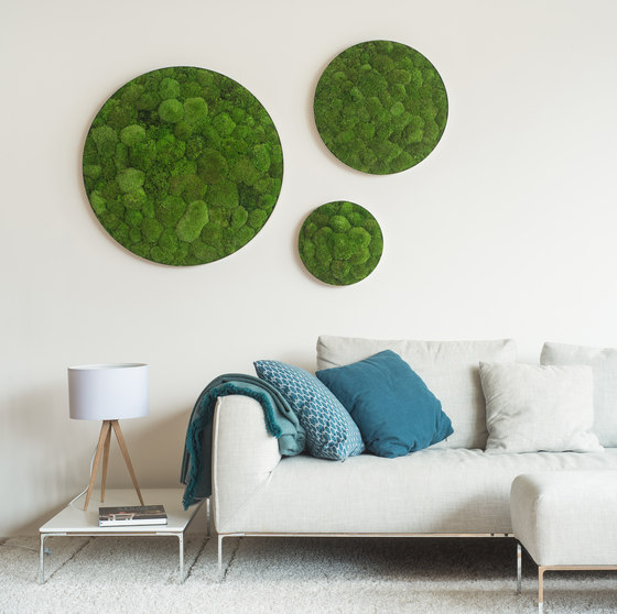 Circle | Pole moss yin and yang 80cm by styleGREEN