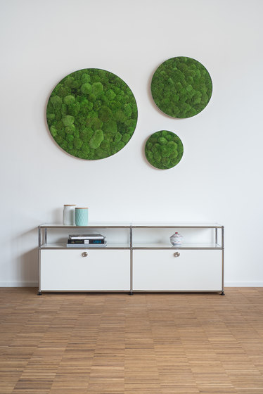 circle | forest and pole moss 34cm de styleGREEN