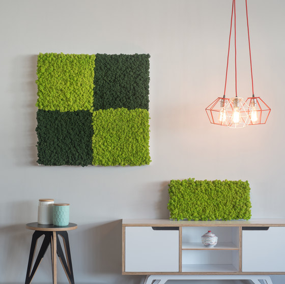 reindeer moss picture 57x27cm by styleGREEN