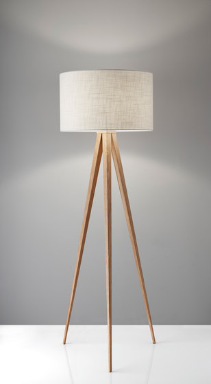 Director Floor Lamp by ADS360
