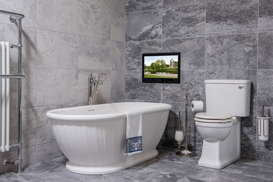 """Professional 24"""" Bathroom TV Mirror Finish by ProofVision"""