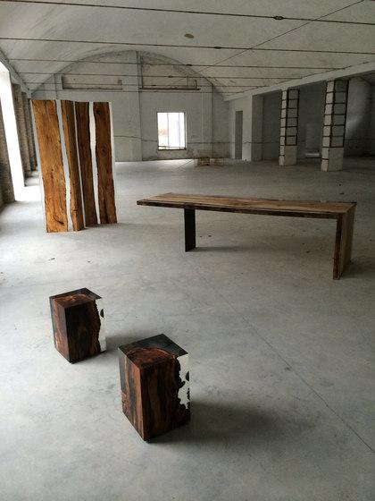 Fungi | Table de Alcarol