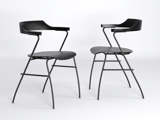 Project Chair de Rex Kralj
