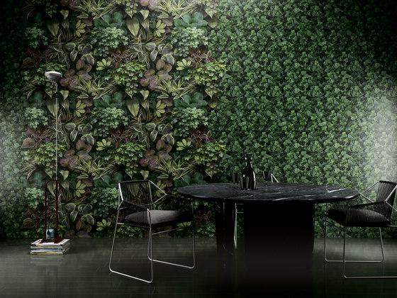 Paper41 Pro | Flora von 41zero42