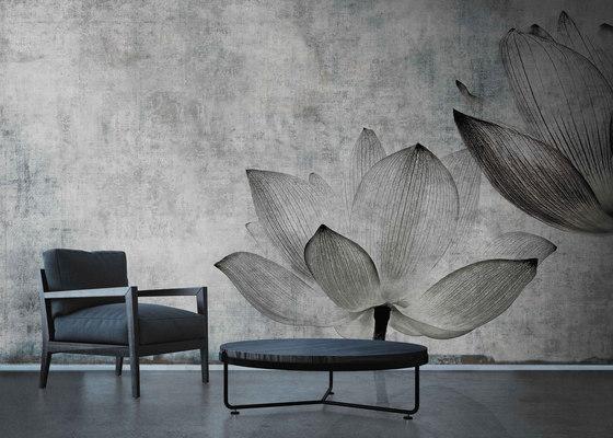 canvas | lotus by N.O.W. Edizioni