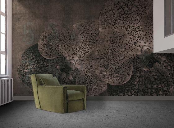 concrete | orchid de N.O.W. Edizioni