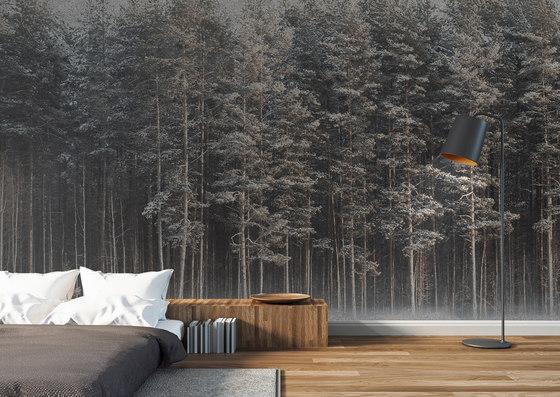 Black Forest by INSTABILELAB
