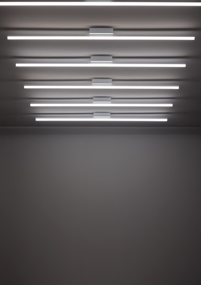Circ Ceiling by GROK