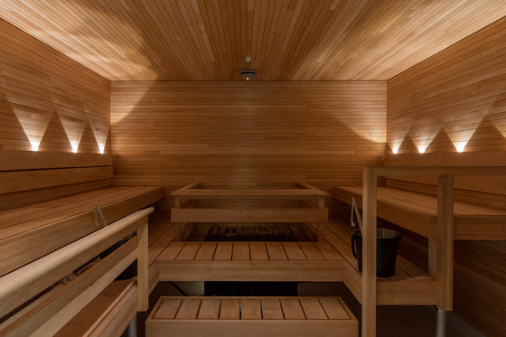 highline sauna+ 2,7K B by Saas Instruments