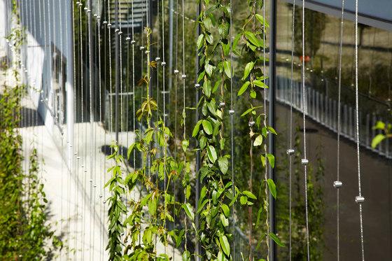 Courtyard greening by Jakob
