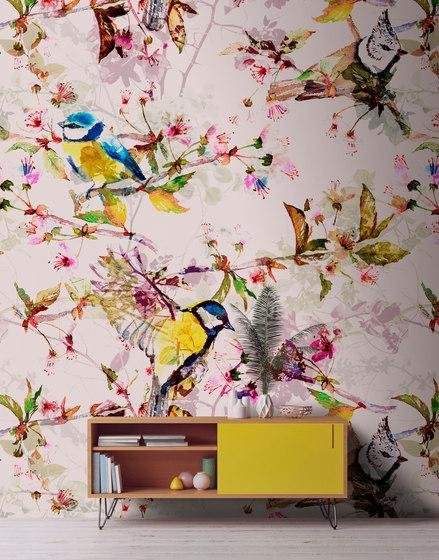 Walls By Patel| Wallpaper Songbirds 2 de Architects Paper