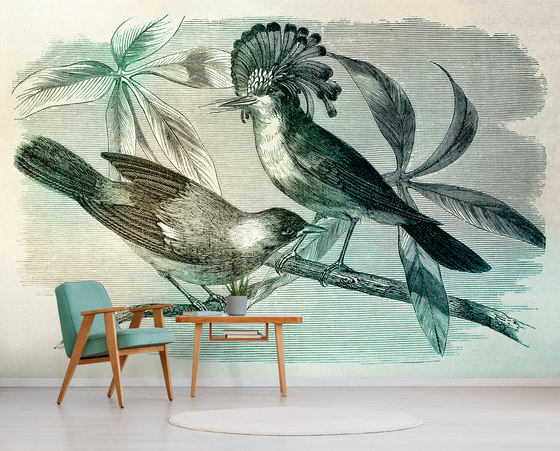 Walls By Patel | Wallpaper Vintage Birds 2 by Architects Paper