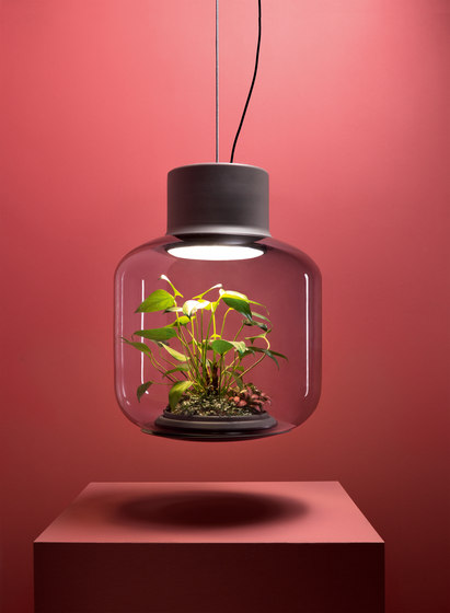 Mygdal Plantlight Regular Zen by Nui Studio