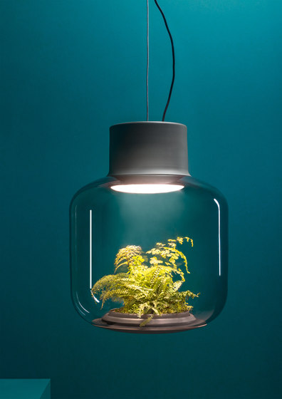 Mygdal Plantlight Regular Jungle de Nui Studio