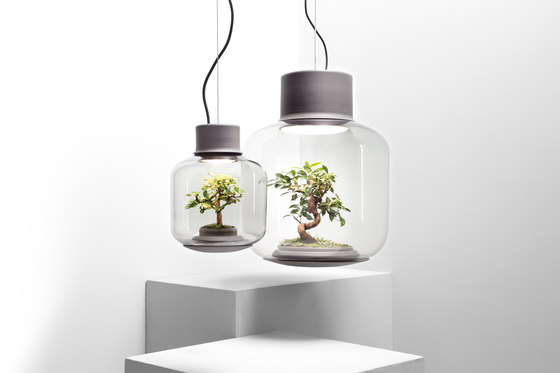 Mygdal Plantlight Large Zen by Nui Studio